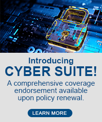 Cyber Suite